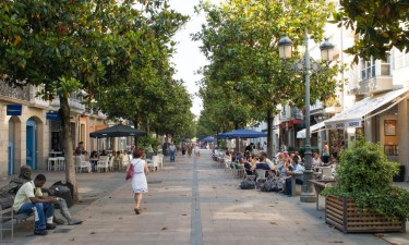 calle-eduardo-dato-street